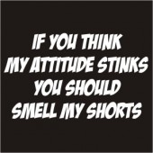 Attitude Stinks? - Smell My Shorts Funny Ladies T-Shirt